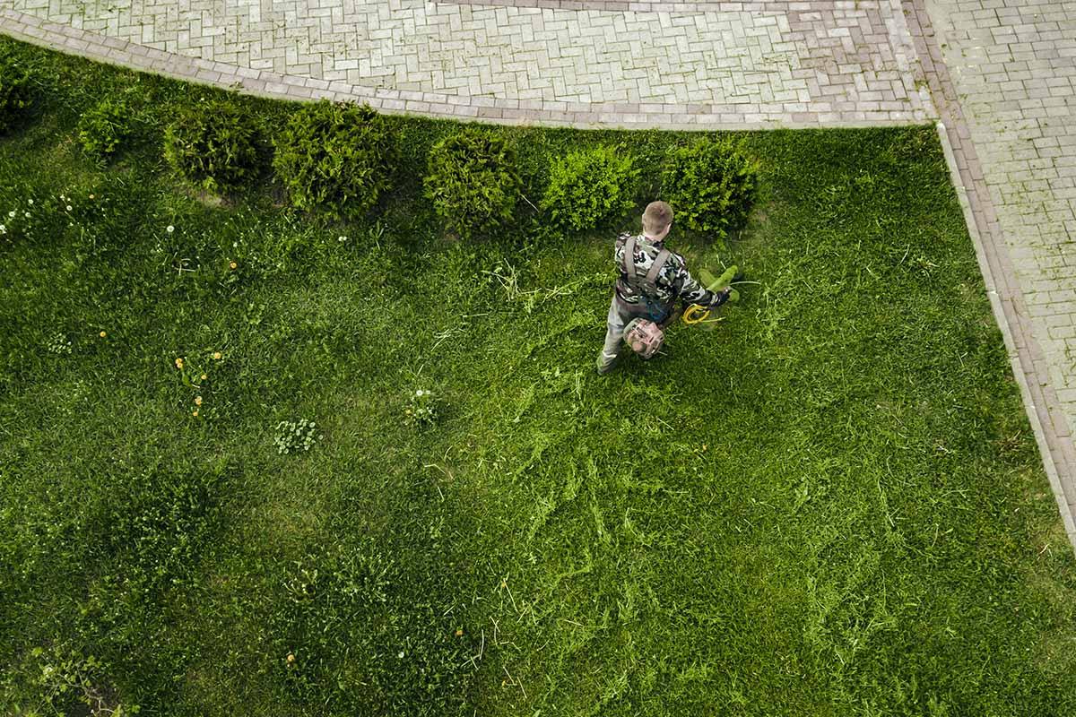 Grünflächenkataster
